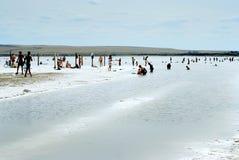 Lago salado Imágenes de archivo libres de regalías