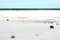 Lago salato Fotografia Stock
