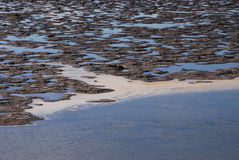 Lago salato Fotografia Stock Libera da Diritti