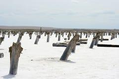 Lago salgado Foto de Stock