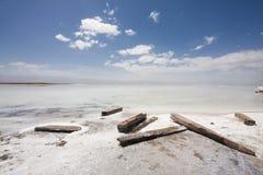 Lago salino Immagini Stock
