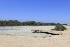 Lago salino, Ras Mohamed Nature Reserve, Qesm Sharm Ash Sheikh, Egitto immagini stock