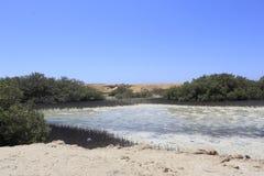 Lago salino, Ras Mohamed Nature Reserve, Qesm Sharm Ash Sheikh, Egitto immagine stock libera da diritti