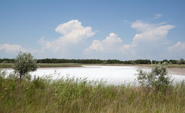 Lago salino, sputo di Kinburn, Ucraina fotografia stock