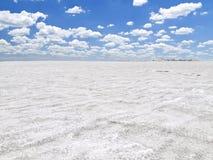 Lago salt Fotografie Stock Libere da Diritti