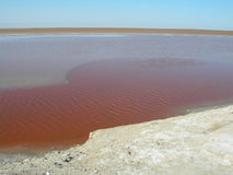 Lago salt 2 Fotografie Stock