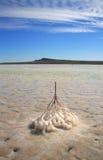 Lago salt Imagen de archivo