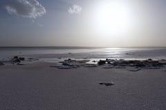 Lago salt Immagine Stock