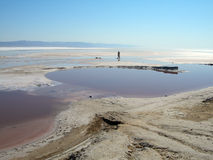 Lago salt 4 Imagem de Stock Royalty Free