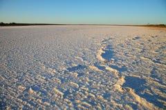 Lago salt Fotos de Stock Royalty Free