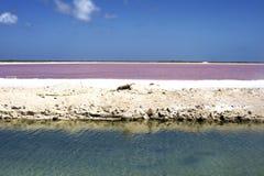 Lago salt Imagem de Stock Royalty Free