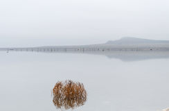 Lago salt Baskunchak imagen de archivo libre de regalías