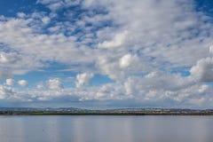 Lago salt com os flamingos perto de Larnaca, Chipre fotos de stock royalty free