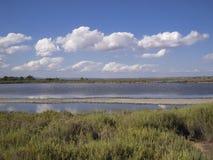 Lago salt in Maiorca, Spagna Immagini Stock Libere da Diritti