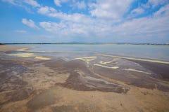 Lago salt perto da cidade de Larnaka Imagens de Stock