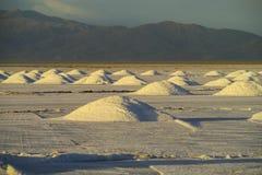 Lago salt Platone, pieghe su Salar fotografie stock libere da diritti