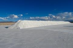 Lago salt Platone, pieghe su Salar immagine stock