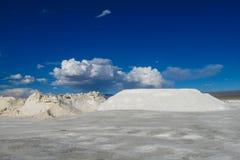 Lago salt Platone, pieghe su Salar immagine stock libera da diritti