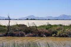 Lago salt Tigaki Fotografía de archivo libre de regalías