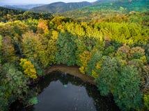 Lago salvaje en el bosque del otoño en la sombra de la montaña Foto de archivo