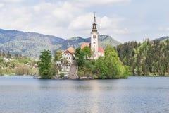 Lago sangrado em Eslovênia, primavera de 2015 Foto de Stock