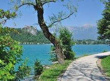 Lago sangrado, parque nacional de Triglav, Eslovenia Foto de archivo