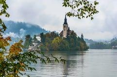 Lago sanguinato in autunno, Slovenia Lago mountain con la piccole isola e chiesa Immagine Stock