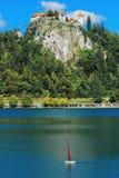 Lago sanguinato di cui sopra del vecchio castello medievale in Slovenia Immagini Stock Libere da Diritti