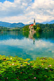 Lago sanguinato, Slovenia, Europa Fotografia Stock