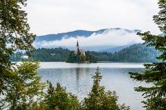 Lago sanguinato, Slovenia Lago mountain con la piccole isola e chiesa Immagini Stock