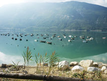 Lago santa croce - belluno Royalty Free Stock Photo