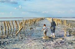 Lago Sasyk-Sivash, Crimeia Uma mulher e uma criança estão andando no lago, com suas partes traseiras à câmera Marco, turistas, cu imagem de stock royalty free