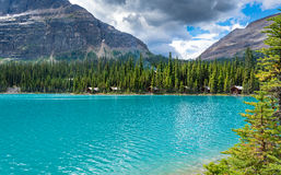 Lago scenico di trascuratezza O'hara in Yoho National Park Fotografia Stock