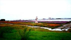 Lago sea de China Qinghai metrajes