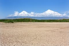 Lago seccato con la diga della canna nella pianura dell'Ararat il monte Ararat Fotografia Stock