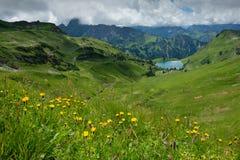 Lago Seealpsee in Allgaeu con il prato del fiore del colofrul Fotografia Stock Libera da Diritti