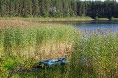 Lago Seliger, Rússia fotografia de stock
