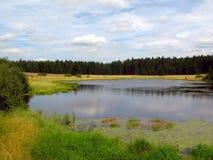 Lago selvagem Foto de Stock