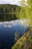 Lago selvagem da floresta em Carélia Fotografia de Stock
