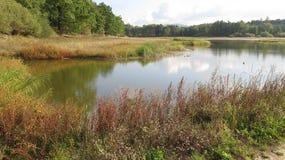 Lago september Foto de Stock