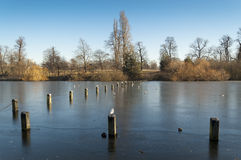 Lago serpentino, Hyde Park, Londres Foto de Stock Royalty Free