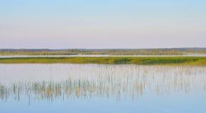 Lago Sestroretsky Razliv wetland no por do sol imagens de stock