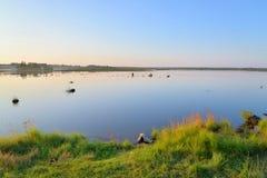 Lago Sestroretsky Razliv wetland no por do sol fotos de stock royalty free