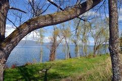 Lago Sevan no fundo das árvores Foto de Stock Royalty Free