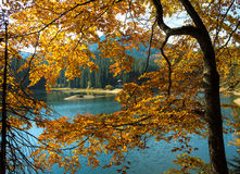 Lago Sinevir nas montanhas Carpathian Imagem de Stock