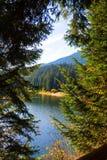 Lago Sinevir nas montanhas Carpathian Fotos de Stock Royalty Free