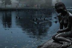 Lago, sirena, anatra, un parco, sera, Fotografia Stock Libera da Diritti