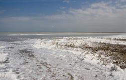 Lago Sivash fotografia de stock royalty free