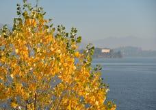 Lago sjö Maggiore i höst Piedmont Italien Fotografering för Bildbyråer