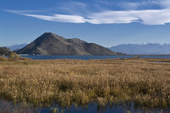 Lago Skadar Immagine Stock